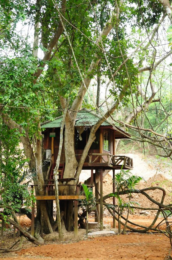 Small tree house stock photo tigger11th 17872891 for Small tree house