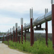 Stock Photo: Oil pipeline