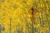 Curve sign with fall colors — Stok fotoğraf