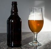Beer bottle and glass — Stock Photo