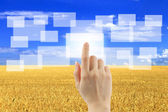 Woman hand pushing virtual icons on interface over wheat field — Stock fotografie