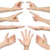 Collage van vrouw handen — Stockfoto