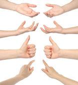 Collage di mani di donna — Foto Stock