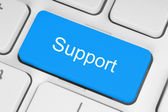Blue support button — Stock Photo