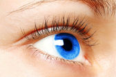 Blue woman eye — Stock Photo