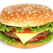 Big hamburger -  