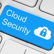 Stock Photo: Cloud computing security concept