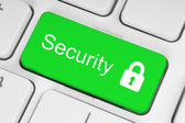 Green security button — Stock Photo