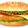 Big chicken hamburger — 图库照片 #33981637
