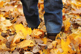 Woman walking on leaves — Stockfoto