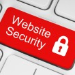 Red website security button — Stock Photo #47550557