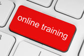 Red online training button — Stock Photo