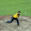 Stock Photo: Baseball pitcher in action