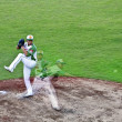 Baseball pitcher in action — Stock Photo