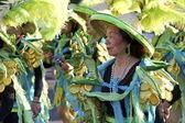 Samba dansçısı karnaval — Stok fotoğraf