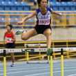 Track and field competition — Stock Photo #14282291