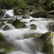 Stock Photo: Natural stream