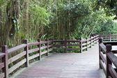 Parque ajardinado — Foto de Stock