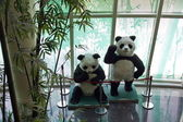 Two panda dolls — Stock Photo