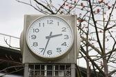 Public clock — Stock Photo