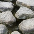 Stock Photo: Step stone