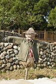 Scarecrow — Stock Photo