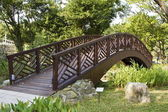 Wooden bridge — Stockfoto