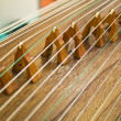 Zither,Gu Zheng — Stock Photo