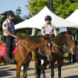 Stock Photo: Mounted police