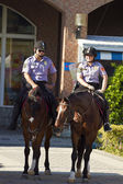 The mounted police — Stock Photo