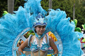 2013 samba dream carnival parade — Stock Photo
