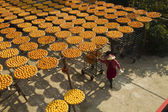 Worker in persimmon processing — Stock Photo