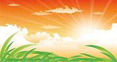 Gün batımı ve otlar ile güzel manzara — Stok Vektör