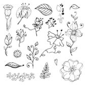 Hand drawn floral design elements collection — Stock Vector