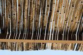 έλος σκίαστρο, κουκούλα μπροστά από μπανγκαλόου. — Φωτογραφία Αρχείου