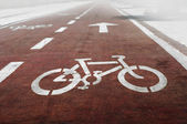 Bike lanes — Stock Photo