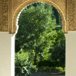 Islamic motifs arch window — Stock Photo #13526758