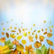 Stock Photo: Border of autumn leaves