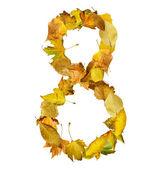 秋天树叶做成的八号. — 图库照片