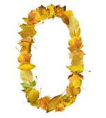 Number zero made of autumn leaves. — Stock Photo
