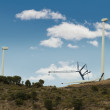 Installation of wind turbines - Stock Photo