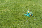 Lawn sprinkler over green grass — Stock Photo