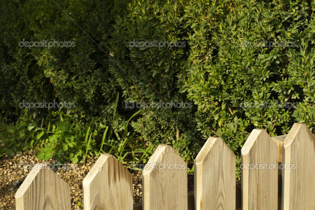 Cerca de madeira decorativa e jardim verde — Fotografias de Stock