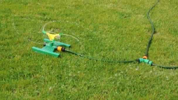 Regadera de césped salpicar agua sobre la hierba verde. — Vídeo de stock