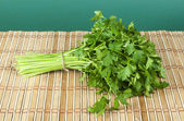 Fresh bunch of green parsley — Stock Photo