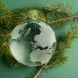 Glass globe on green fir branches — Stock Photo