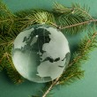 Glass globe on green fir branches — Stock Photo #16947409