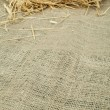 Straw on burlap — Stock Photo #19358391