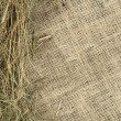 Royalty-Free Stock Photo: Hay on burlap