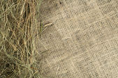 Hay on burlap — Stock Photo